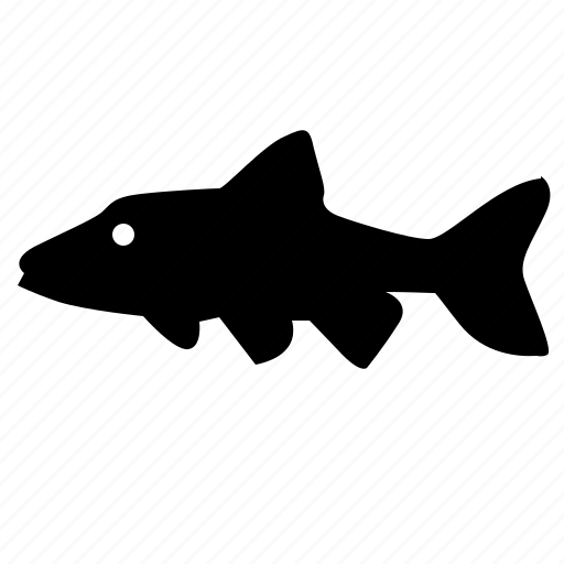 fish, food, predator, river, shiner icon