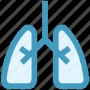 anatomy, body, health, lung, lung cancer, lungs, organ icon