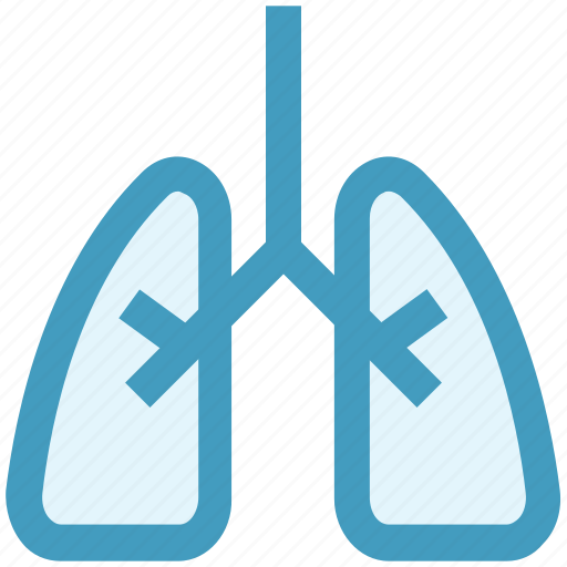 Anatomy, body, health, lung, lung cancer, lungs, organ icon - Download on Iconfinder