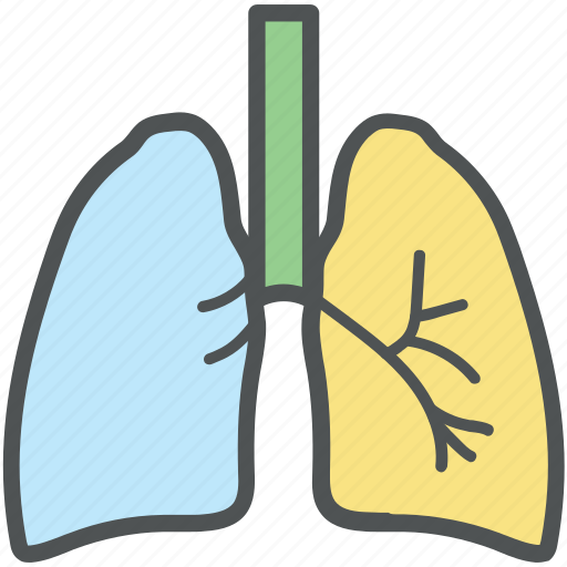 asthma, breathing, human, lungs, lungs symbol, organ, respiratory system icon
