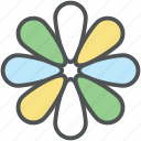 beauty, blossom, daisy, flower, nature, spring flower, zinnia icon