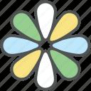 beauty, blossom, daisy, flower, nature, spring flower, zinnia icon