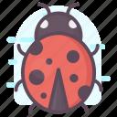 aphid, beetle, bug, flea, insect, ladybird, ladybug icon