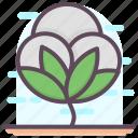 cotton, cotton crop, cotton farming, cotton flower, cotton plant icon