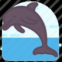 cetacean, dolphin, mammal fish, sea animal, sea creature icon