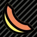 food, fruit, melon, slice icon