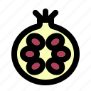 food, fruit, fruity, pomegranate icon