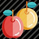 cooking, food, fruit, ingredients, kitchen, recipe, restaurant