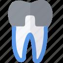 crown, dental, medical, tooth