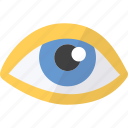 eye, medical, objet, view