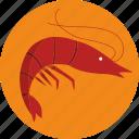 food, shrimp icon