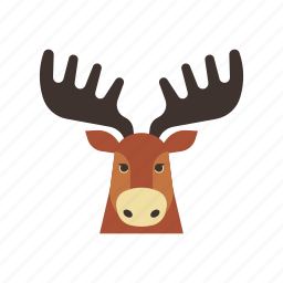 animal, canada, characteristic, mascot, moose, nature, wild icon