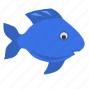 fish, ocean, ornamental, sea icon