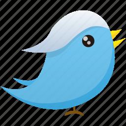 communication, media, social, twitter icon