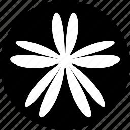 bloom, decorative, floral, flower, shape, sign icon