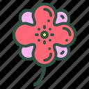 blossom, camelia, floral, flower, nature icon