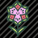 blossom, crocus, floral, flower, nature icon