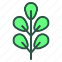 floral, foliage, leaf, nature, plant icon