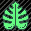 floral, foliage, leaf, nature, plant icon
