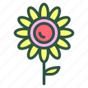blossom, floral, flower, nature, sunflower icon