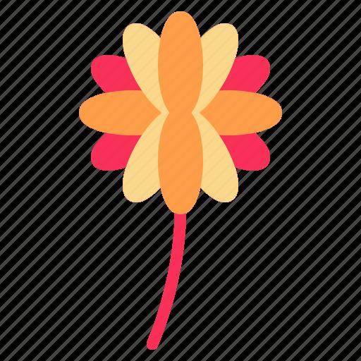 blossom, dahlia, floral, flower, nature icon