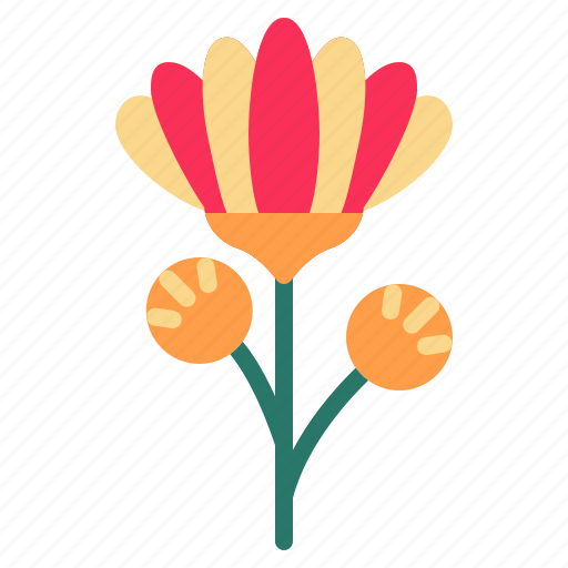 blossom, chrysanthemum, floral, flower, nature icon