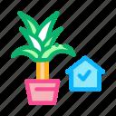 boutique, domestic, floral, flower, potting, present, store