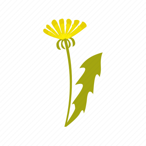 botanic, bouquet, camomile, cultivated, eco, ecology, environment, flower, flowers, garden, leaf, nature, plant icon