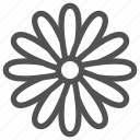 camomile, chamomile, daisy, flower, nature icon