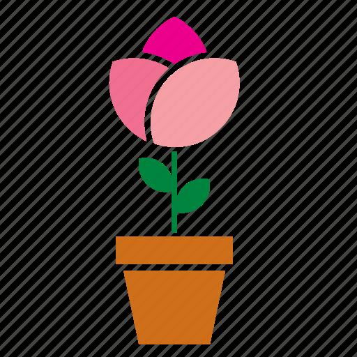 decoration, floral, flower, flowerpot, garden, nature, rose icon