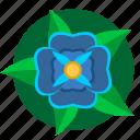 blue, flower, green, nature, plant
