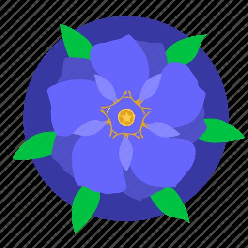 blue, flower, nature, plant, violet icon