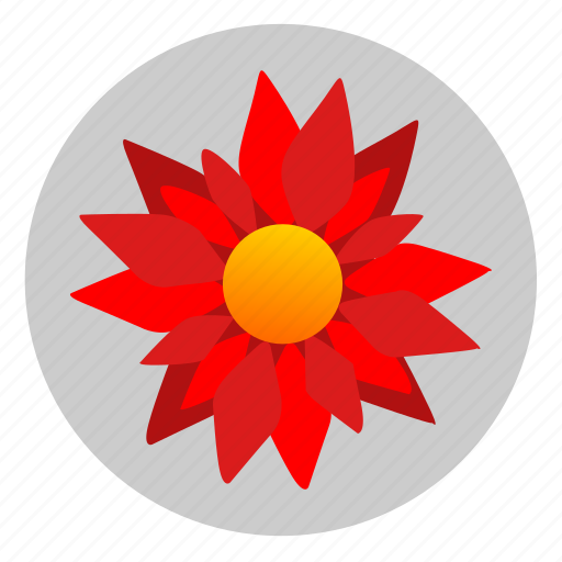 Astra, flower, plant, red, rose icon - Download on Iconfinder
