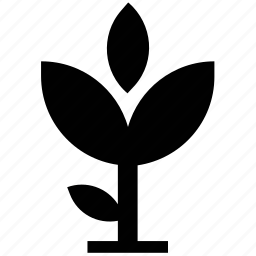 aquatic plant, flower silhouette, foliage, growth, nature, sapling, small plant icon