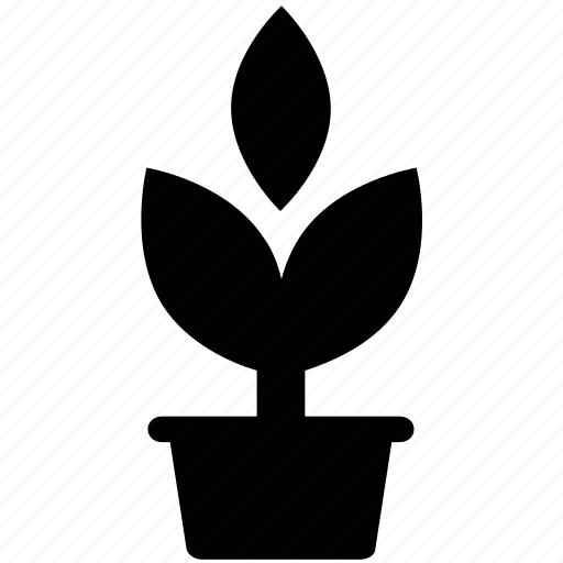 flower, gardening, growth, nature, plant pot, sapling icon