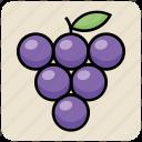 berries, flavor, food, fruit, grapes, slot icon