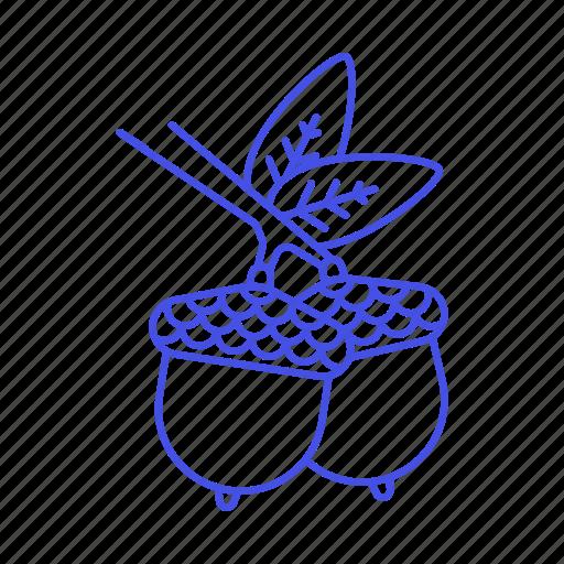 acorn, branch, food, fruits, leaf, nut, oak, oaknut, oaknuts, of, the, tree, vegetables icon