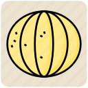 food, garlic, ingredient, onion, vegetable icon