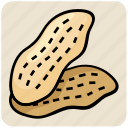 dry fruit, food, ground nuts, nuts, peanuts icon