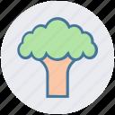 broccoli, cooking, eating, food, salad, vegetable icon