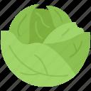 cabbage, cooking, food, shop, supermarket, vegetable