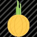 cooking, food, onion, shop, supermarket, vegetable
