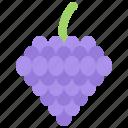 cooking, food, supermarket, fruit, grape, shop