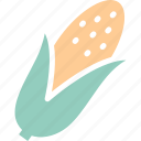 corn, maize, pole corn, sugar corn icon