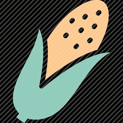 corn, maize, pole corn, sugar corn icon