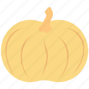 food, nutrition, pumpkin, squash plant, vegetable