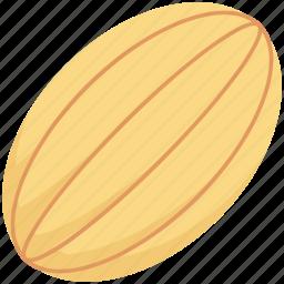 cantaloupe, food, fruit, honeydew, melon icon