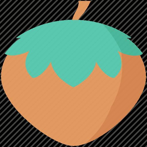 acorn, cobnut, hazelnut, nut, oak nut icon
