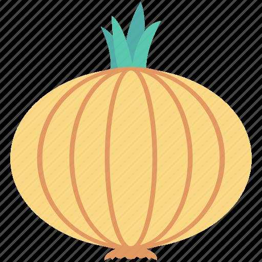 beetroot, bulb onion, common onion, onion, vegetable icon