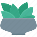 ecology, foliage, spinach, spinach leaf, spinach leaves icon